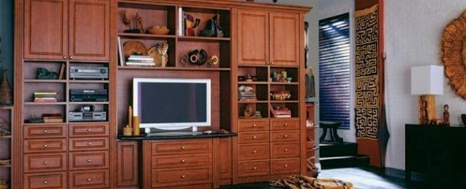 Media room, home entertainment