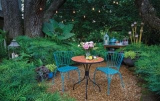 Backyard escape with beautiful plants and seating and grilling area