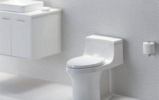 San Souci Toilet - Touchless Flush by Kohler