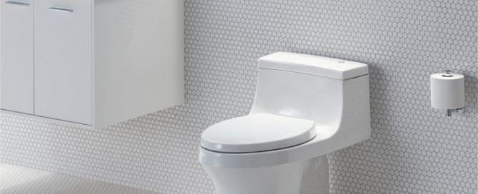 San Souci Toilet - Touchless Flush by Kohler