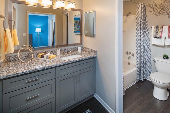 Small bathroom design-Jill Barnes interior designer|Cortland Partners
