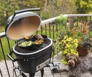 Primo Ceramic Grill on deck with plants and a dog