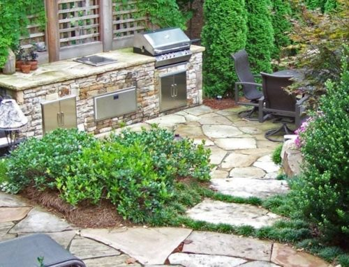 Q & A – How do I keep my landscape looking lively in the wintertime?