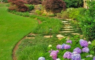 Lush lawn and garden with hydrangea and pavers