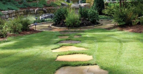 Backyard with stone pathway through lawn