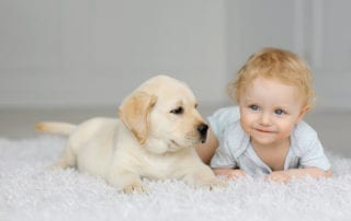 Puppy and baby on white carpet