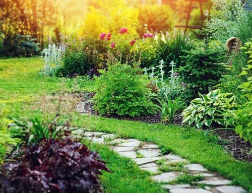 Q & A – Why should my landscaper be insured?