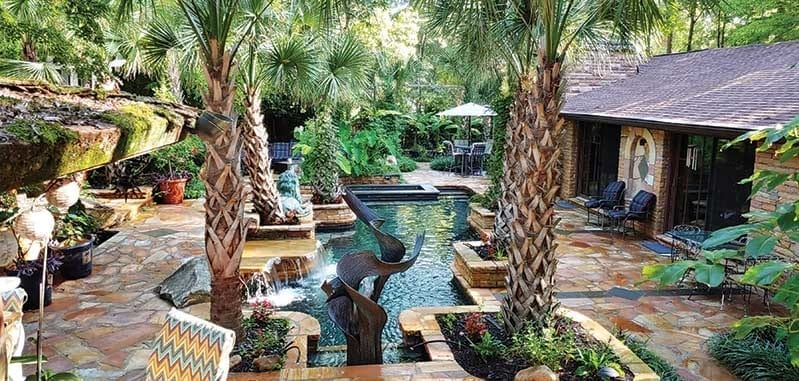 Exotic backyard with palm trees surrounding pool
