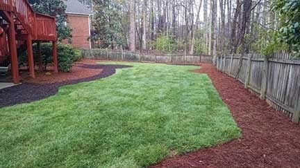 Fenced backyard with Fescue and mulch