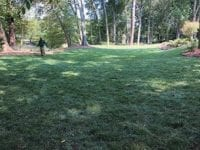 Backyard with man watering his Fescue lawn