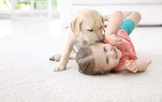 girl and puppy playing on white carpet